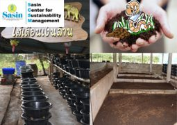 SCSM ON-SITE EXPERIENCE: Earthworms: the Agriculturalists' Best Friends