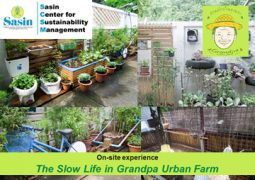SCSM On-site experience: The Slow Life in Grandpa Urban Farm
